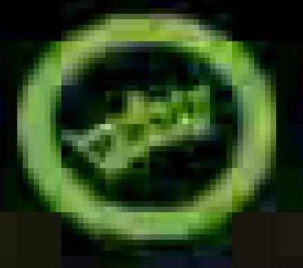 greenvideologo.jpg